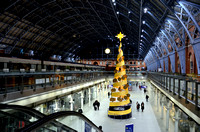 King's Cross Station with Christmas Tree